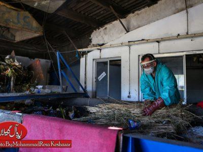 تلاش بی وقفه پرسنل کارخانه کمپوست در روزهای کرونایی
