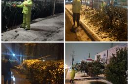 عملیات اجرایی برف تکانی درختان توسط نیروهای فضای سبز