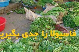 انتقال انگل فاسیولا از طریق سبزیجات خام را جدی بگیرید